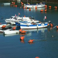 petits bateaux sur le bassin Notre Dame