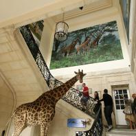 Intérieur du Muséum d'histoire naturelle